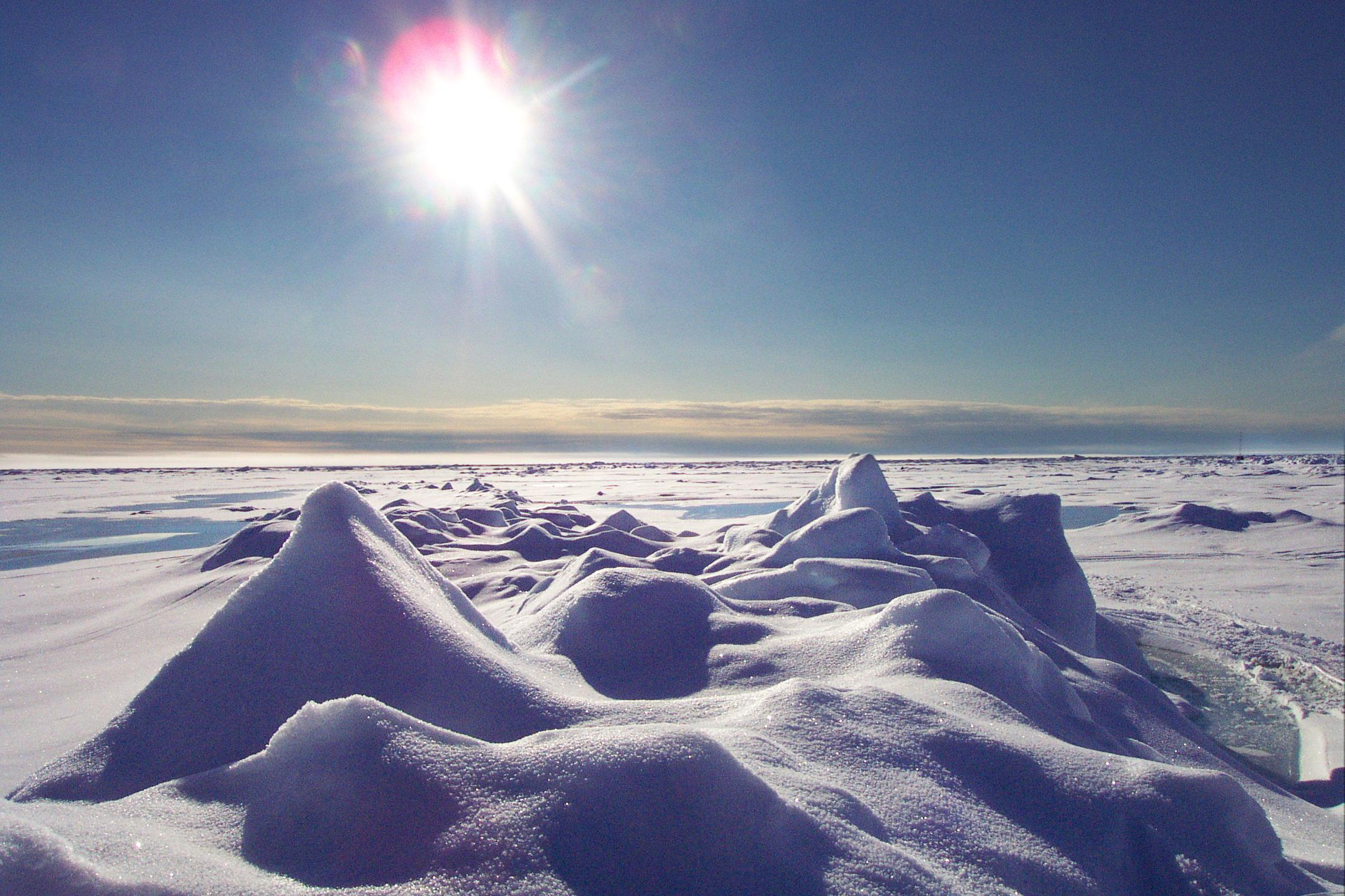 Картинки по запросу арктика