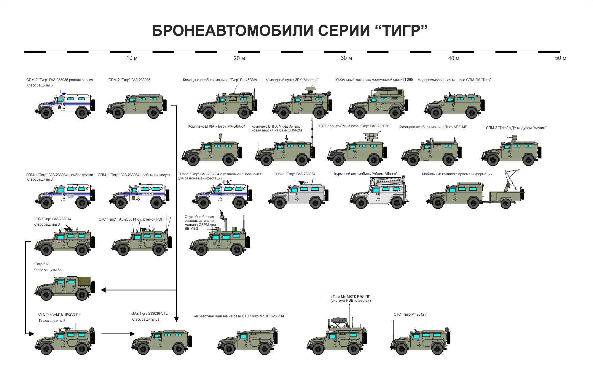 Инфографика модификаций легкой многоцелевой бронированной машины «Тигр».