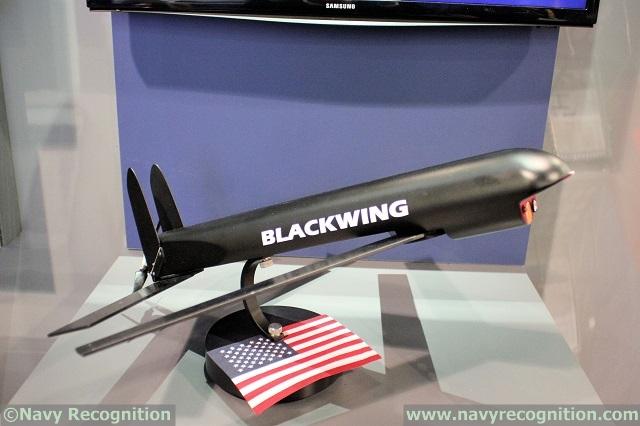 Беспилотный летательный аппарат Blackwing (Блэквинг).