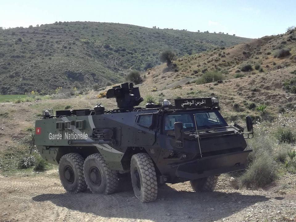 Бронетранспортер Renault Truck Defense VAB Mk 3 Национальной гвардии Туниса, март 2017 года.