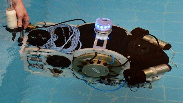 Демонстрация подводного робота в бассейне ДВФУ.