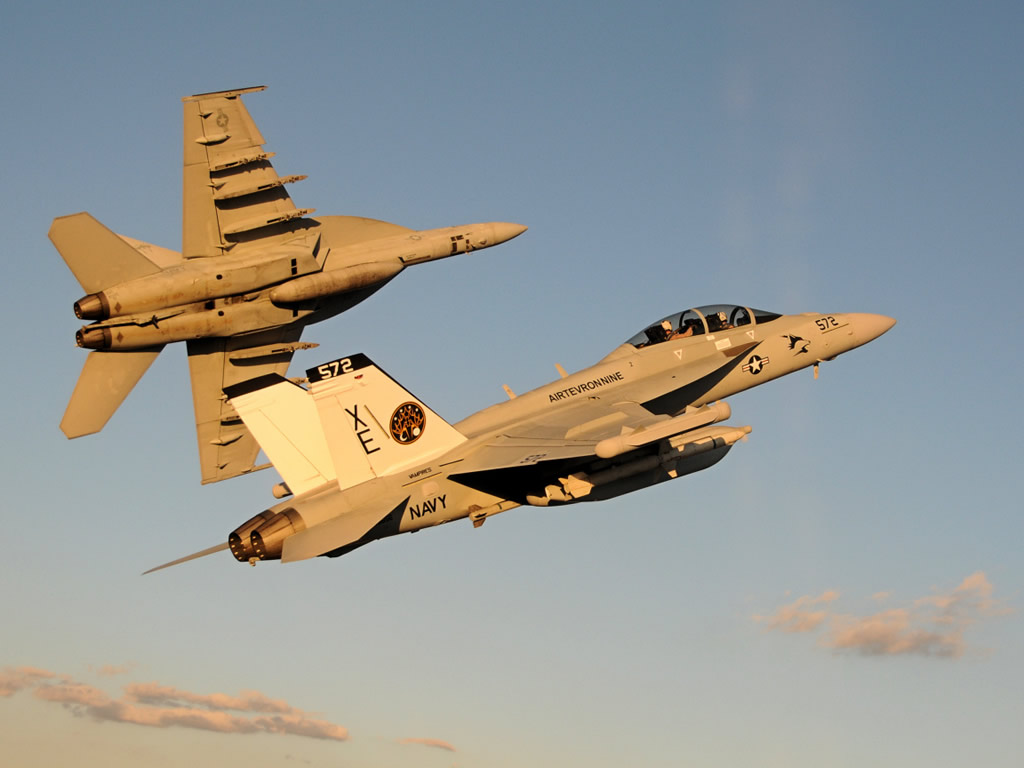 Истребители F/A-18F и E/A-18G (РЭБ).