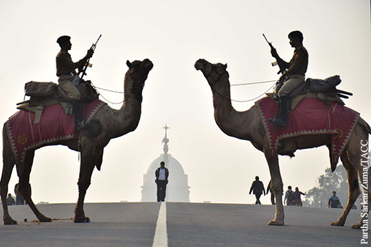 Индии и Пакистану ради мира в регионе следует проявить по-истине верблюжье спокойстве