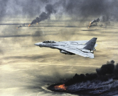 Истребитель F-14A