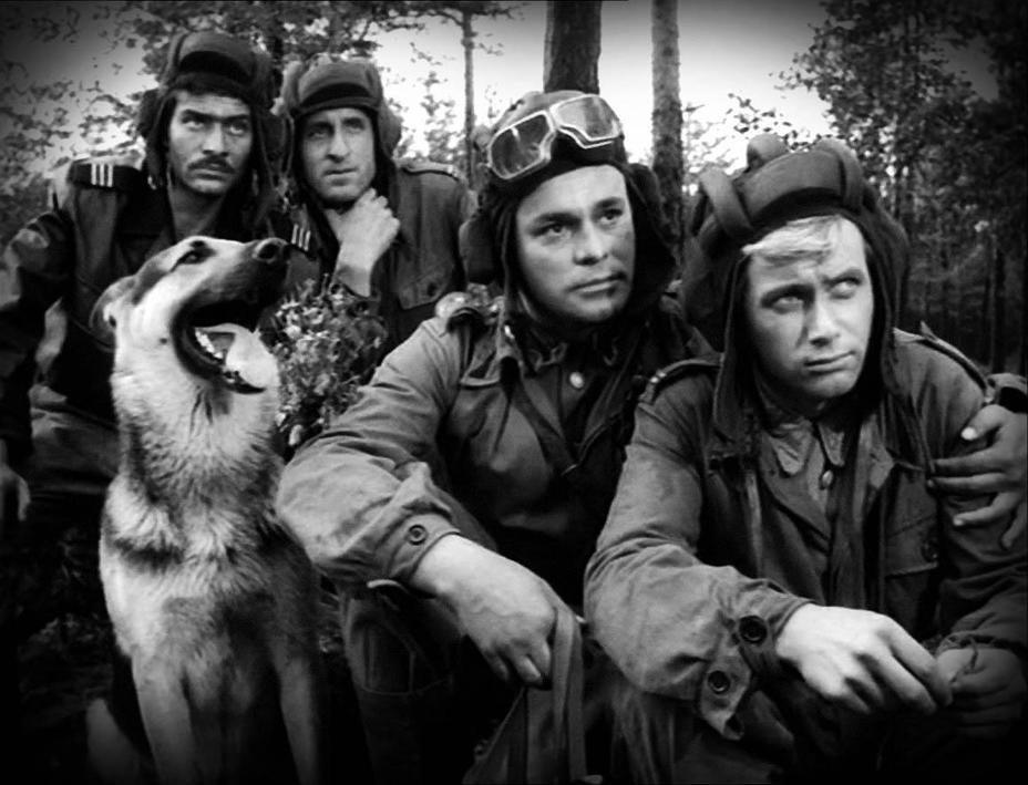 Казус, Варшава решила не отмечать официально 75-летие освобождения от