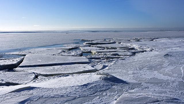 Лед на поверхности Финского залива. Архивное фото.