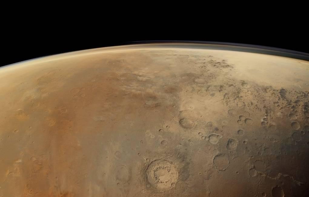 Бактериальная батарейка для Марса обогнала по эффективности почти все растения