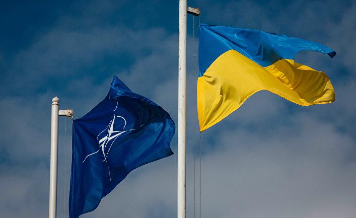 Национальный флаг Украины и флаг Организации Североатлантического договора.