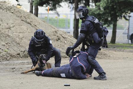 Отработка задержания террориста. Фото Бруно Доменджода