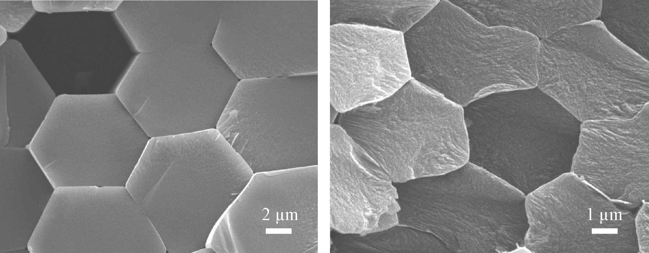 Сечение, перпендикулярное волокнам в однокомпонентных материалах с однонаправленной структурой. Слева материал из стеклянных (базальтовых) волокон, справа - из углеродных волокон.