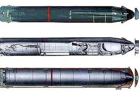 Жидкостная ракета типа Р-29Р с РГЧ