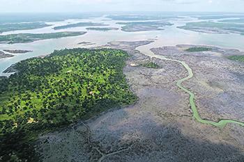 Регион дельты Нигера лишен прямой выгоды от добываемой здесь нефти. Фото Reuters