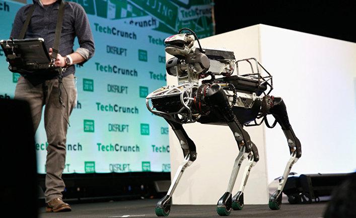 """Робот компании """"Бостон Динамикс""""."""
