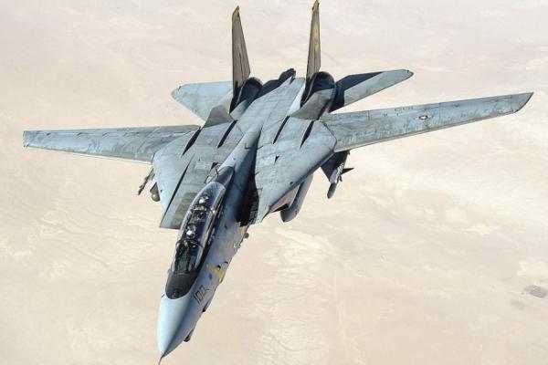 Самолет Grumman F-14 Tomcat