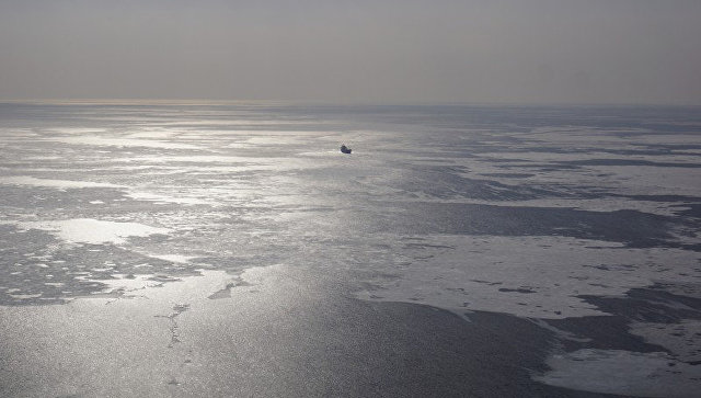 В Японском море. Архивное фото.