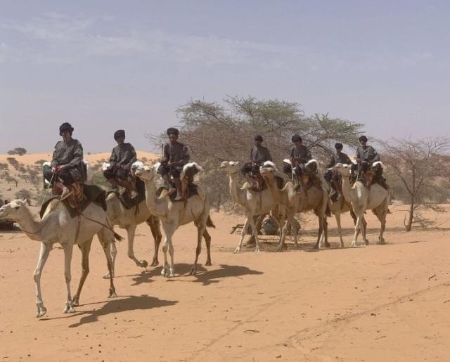 Верблюжья кавалерия в составе Группы кочевников Национальной гвардии Мавритании